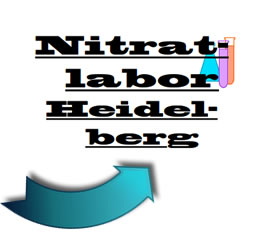 Download Flyer Nitratlabor Heidelberg